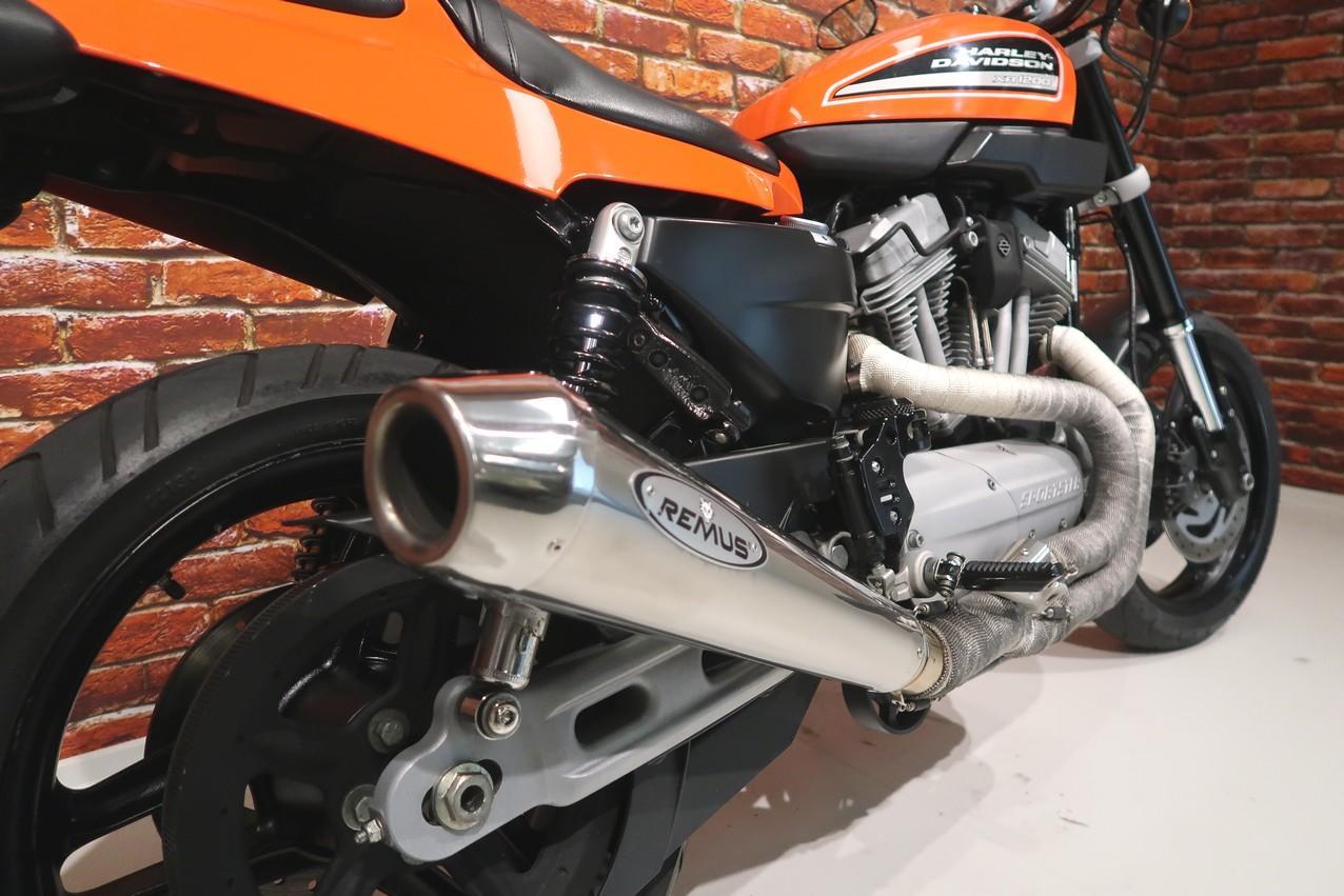 HARLEY-DAVIDSON - XR 1200 XR1200 Orange 2008
