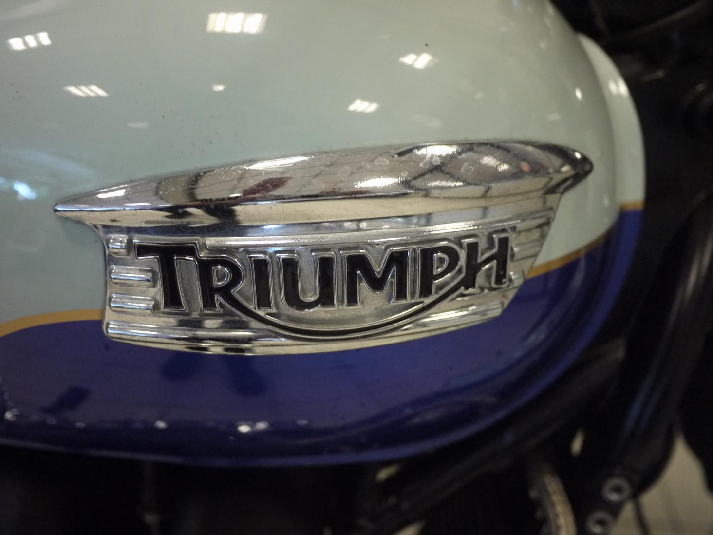 TRIUMPH - Bonneville T 100 Limited Edit