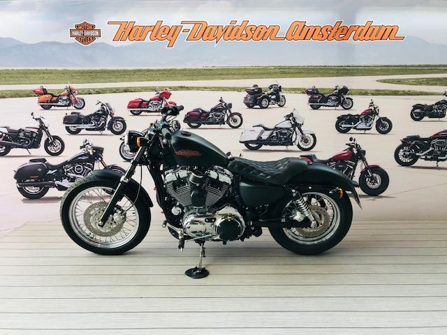 HARLEY-DAVIDSON - XL1200 V