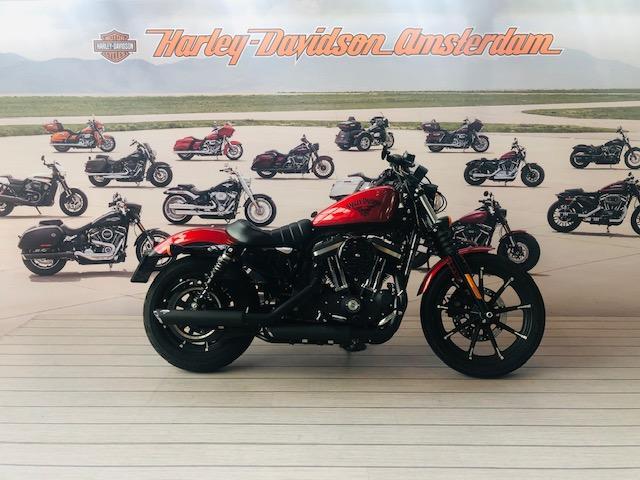 HARLEY-DAVIDSON - XL883N Iron Custom Color