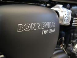 TRIUMPH - BONNEVILLE T100