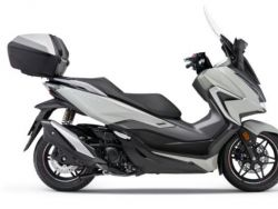 NSS 350 FORZA
