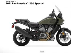 RA1250S Pan America special Ad