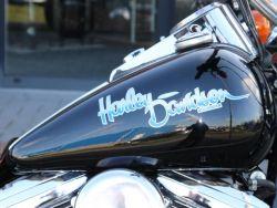 HARLEY-DAVIDSON - FXSTC Softail Custom