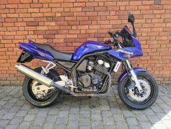 FZS 600
