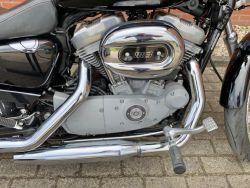 HARLEY-DAVIDSON - XL883 Custom sportster