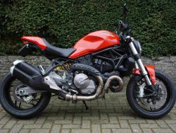 Monster 821 Geel