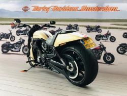 HARLEY-DAVIDSON - VRSCDX Night Rod Special