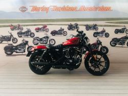 XL883N Iron Custom Color - HARLEY-DAVIDSON
